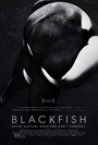 Cartel de Blackfish