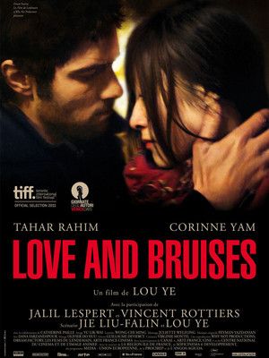 Póster de Love and Bruises