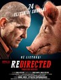 Cartel de Redirected